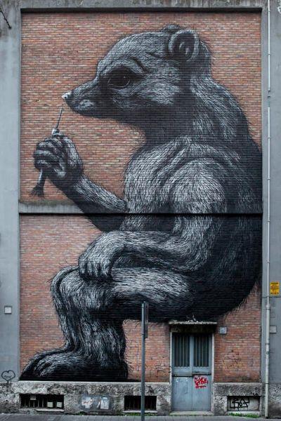 Roa Wall